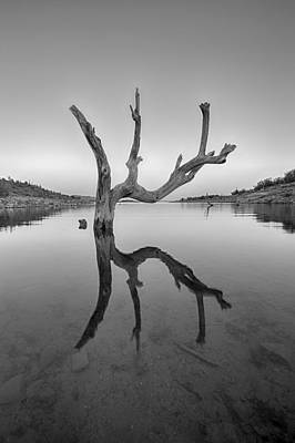 Photograph - The Kings Hand 2 Black And White by Scott Campbell