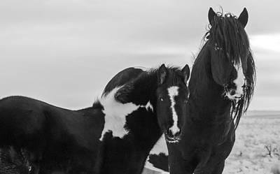 Washakie Photograph - The King's Heir by Sandy Sisti