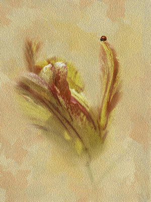 The Lady And The Parrot Tulip Print by Diane Schuster