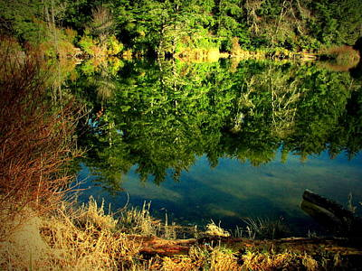 Photograph - The Lake At Fort Stevens by Joyce Dickens