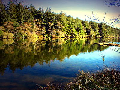 Photograph - The Lake At Fort Stevens Two by Joyce Dickens