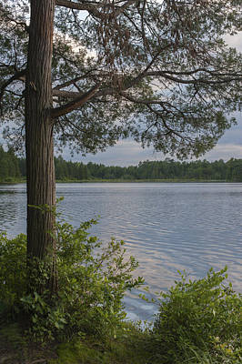 Photograph - The Lake Lakehurst New Jersey by Terry DeLuco