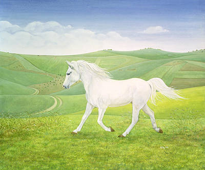 Wild Horse Painting - The Landscape Horse by Ditz