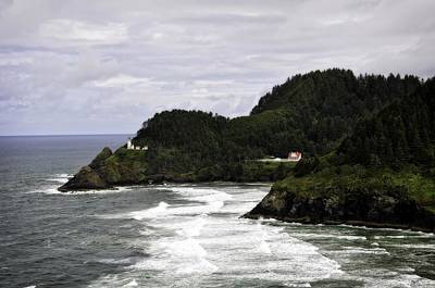 American Milestones - The Landscape Of Heceta by Image Takers Photography LLC - Laura Morgan