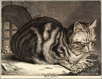 Large Cats Painting - The Large Cat  by Cornelis de Visscher