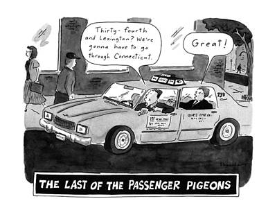 Lexington Drawing - The Last Of The Passenger Pigeons 'thirty-fourth by Danny Shanahan