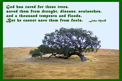 The Last Tree John Muir Quote Art Print