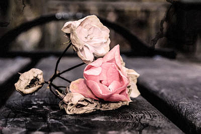 Ruins Mixed Media - The Last Wilted Roses by Tommytechno Sweden
