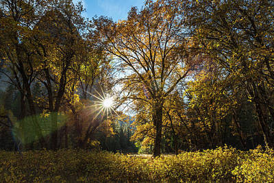 Cathedral Rock Photograph - The Late Afternoon Autumn Sun Shines by Tracy Barbutes