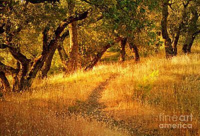 The Late Afternoon Walk Art Print