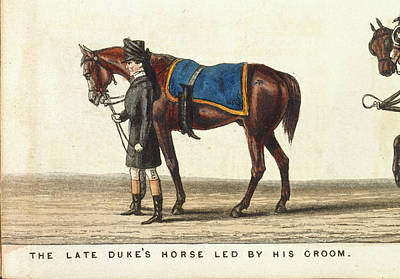 Funeral Procession Photograph - The Late Duke's Horse by British Library