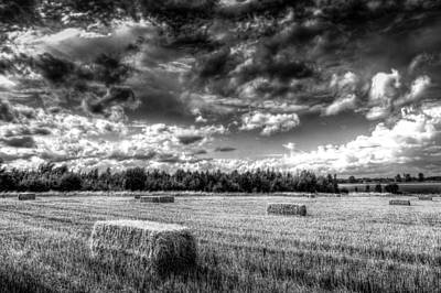 Photograph - The Late Summer Farm by David Pyatt