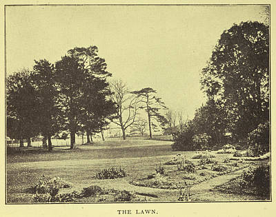The Lawn Of Down House Art Print by British Library