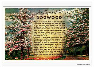Photograph - The Legend Of The Dogwood by Audreen Gieger