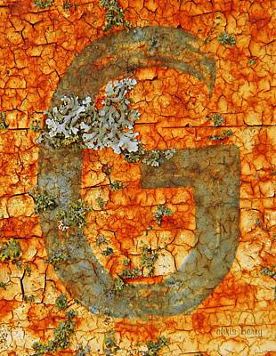 The Letter G With Lichens Art Print by Chris Berry