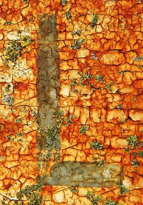 Photograph - The Letter L With Lichens by Chris Berry