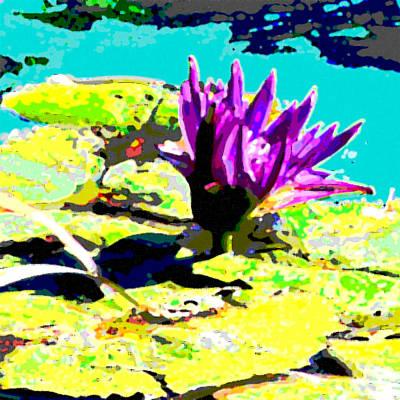 The Lily Flower Original