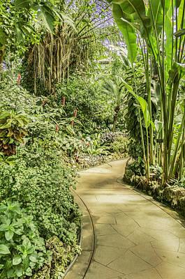 Chicago Botanic Garden-indoor Walkway Original by David Allen Pierson