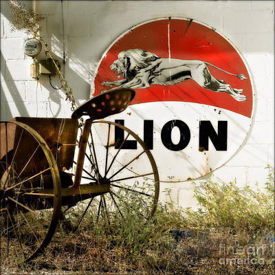 Photograph - The Lion And The Chariot  by T Lowry Wilson