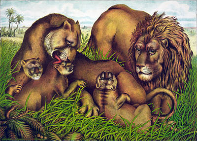 The Lion Family Art Print by Georgia Fowler
