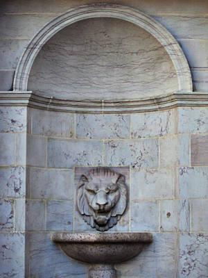Photograph - The Lion Fountain by Angelina Vick