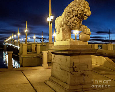 Photograph - The Lion by Richard Burr