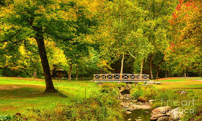 Photograph - The Little Wooden Footbridge by Kathy Baccari