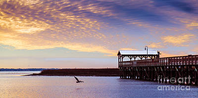 Photograph - The Lone Pelican Shem Creek Pier Mt. Pleasant by Donnie Whitaker
