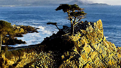 The Lone Cypress Carmel California Original by Bob and Nadine Johnston