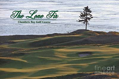 Photograph - The Lone Fir Of Chambers Bay - Chambers Bay Golf Course by Chris Anderson