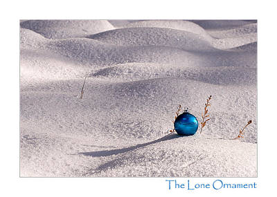 Photograph - The Lone Ornament - 2nd Edition by Peter Tellone
