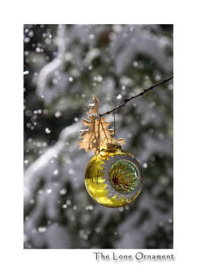 Photograph - The Lone Ornament 6th Edition by Peter Tellone