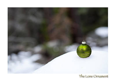 Photograph - The Lone Ornament 7th Edition by Peter Tellone