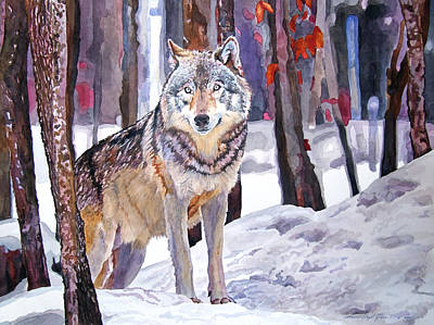 Endangered Wildlife Painting - The Lone Wolf by David Lloyd Glover