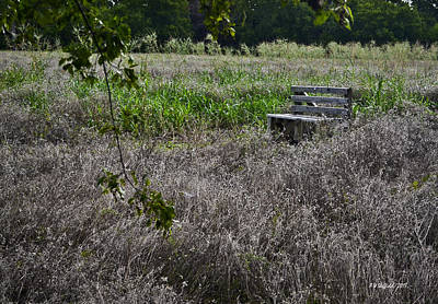 Photograph - The Lonely Bench by Allen Sheffield