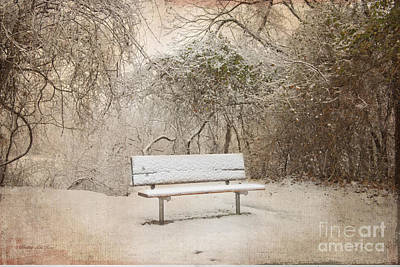 The Lonely Bench Art Print by Betty LaRue