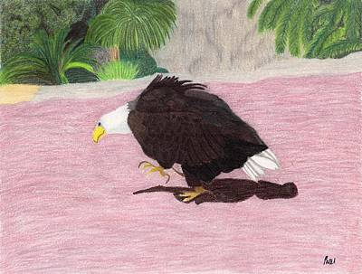 Pastel - The Lonely Eagle by Bav Patel