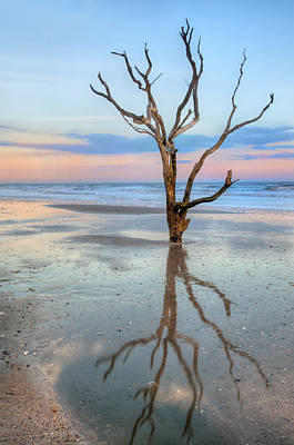 Photograph - The Lonesome Tree by JHR photo ART
