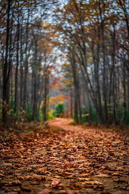 Photograph - The Long Winding Road by Anthony Thomas