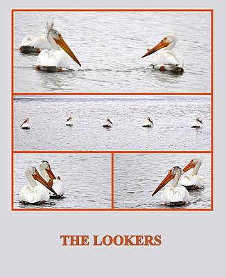 Photograph - The Lookers by AJ  Schibig