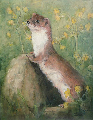 Weasel Painting - The Lookout by Ellie O Shea