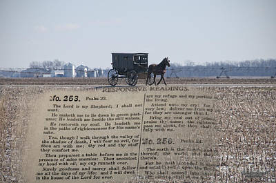 Amish Photograph - The Lord Is My Shepherd by David Arment