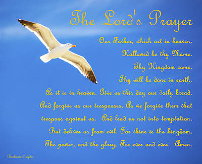 Religious Art Photograph - The Lords Prayer Seagull by Barbara Snyder