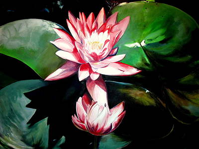 The Lotus Art Print by John  Duplantis