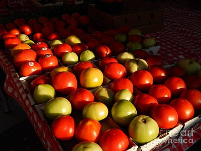 Photograph - The Louisiana Creole Tomato In New Orleans At The Creole Tomato Festiva by Michael Hoard