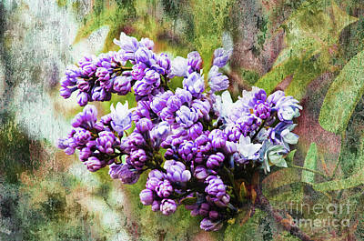 The Trees Mixed Media - The Lovely Lilac by Andee Design
