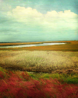 The Low Country Art Print by Amy Tyler