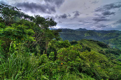 The Lush Greens Of Costa Rica Art Print
