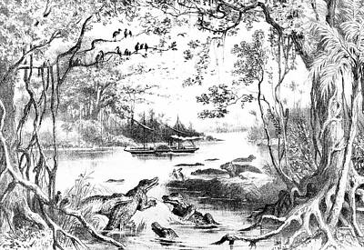 Zambesi River Drawing - The 'ma-robert' On  The Zambesi River by Mary Evans Picture Library