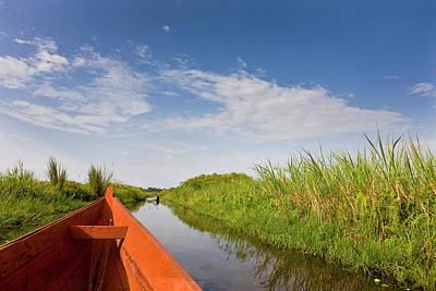 Papyrus Photograph - The Mabamba Wetlands Near Kampala by Martin Zwick